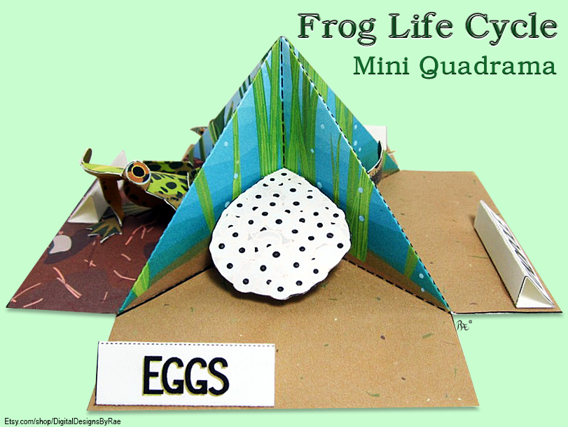 Easy Action Origami Frog that JUMPS - Easy Paper Toys Crafts - How ... | 609x811